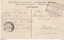 "LUXEMBURG AMBULANT BAHNPOST : ZK(Wiltz)     ""TROISVIERGES - / LUXEMBOURG  /  7.1.09 / AMBULANT "" (catal. 18) - Luxemburgo"
