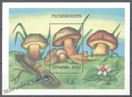 Ghana 1989 Yvert BF 145, Flora, Mushrooms (II) - Miniature Sheet - MNH - Ghana (1957-...)