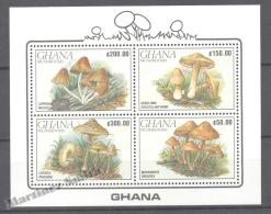 Ghana 1990 Yvert BF 158, Flora, Mushrooms (I) - Miniature Sheet - MNH - Ghana (1957-...)