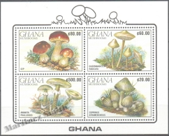 Ghana 1990 Yvert BF 163, Flora, Mushrooms (II) - Miniature Sheet - MNH - Ghana (1957-...)