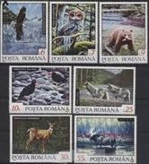 Romania 1992 Birds Of Prey Eagle ELK Wild Animals Fauna Nature Owls Deer Wolf Bears Mammals Stamps MNH Michel 4836-4842 - Owls