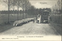 CPA Wyneghem   La Chaussée De Wommelghem - Wijnegem