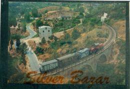 TRENI- FERROVIE CALABRO-LUCANE-LINEA COSENZA SAN GIOVANNI IN FIORE-LOCOMOTORE LM4 606 - Eisenbahnen