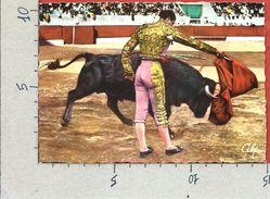 CARTOLINA NV FRANCIA - TORERO JUMILLANO - Travail De Muleta - Pase Por Alto - 10 X 15 - Corrida