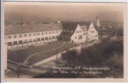 AK - LANGENLOIS - Landeskursstätte Für Wein,- Obst- U. Gartenbau  1955 - Langenlois