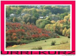 TRANSNISTRIA-2012 Landscape Orchard Garden Near Village Shipka Postcard Card Mint - Moldova