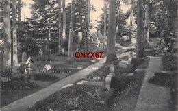 LUSSE-LA PARRIEE (Vosges-Haut-Rhin) Cimetière Militaire Friedhof Massif Vosgien Guerre Krieg 1914-1918 Photo BLUM Weiler - Cimiteri Militari