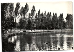 Turnhout - Stadspark - Turnhout