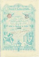 Action Ancienne - Trust Colonial -Titre De 1899 - Banque & Assurance