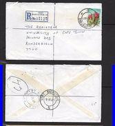 S.Africa, Registered Domestic Letter, 25c, Protea,   , PORT SHEPSTONE 18 VI 81 > RONDEBOSCH DEPOT 21 VI 81 - Covers & Documents