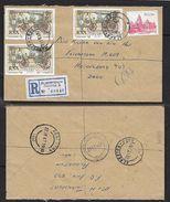 S.Africa, Registered Domestic Letter, 91c, ALBERTON NOORD 2 22 IX 87 > HEIDELBERG 23 IX 87, - Covers & Documents