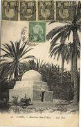 Tunisie CPA  Gabés -Marabout Dans  L'Oasis  (175154) - Tunisia