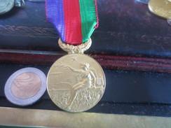 MEDAILLE  Sté NATIONALE D'ENCOURAGEMENT AU PROGRES - GRAVEUR MASSONNET - VOIR PHOTOS - Médailles & Décorations