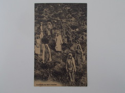 Carte Postale - Cueillette Du Thé à Ceylan (1722) - Cartoline