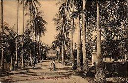 CPA Indonesia, Laan Deli Maatschappij (360795) - Cartes Postales