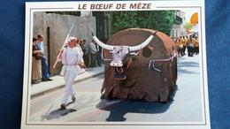 CPM MEZE 34 LE BOEUF DE MEZE ANIMAL TOTEMIQUE FOLKLORE GROS PLAN ANIMATION - Mèze