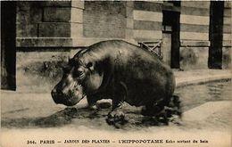 CPA PARIS (5e) - Jardin Des Plantes Hippopotame Kako Sortant Du Bain (218092) - Zonder Classificatie