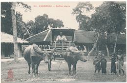 CAMBODGE - Buffles Attelés - Cambodia