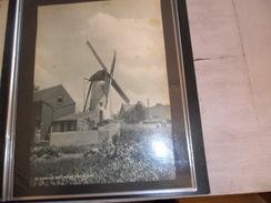 """Origineel Knipsel ( 79 ) Uit Tijdschrift """" De Stad """" 1936   - De Witte Molen ( Moulin ) Van Selzaete ( Zelzate ) - Vieux Papiers"""
