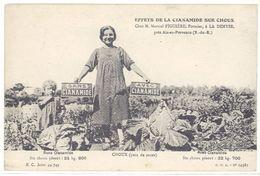 Cpa La Denyse Près Aix En Provence - Effets De La Cianamide ...M. Figuière ...  ( Choux )   (S.2384) - Aix En Provence