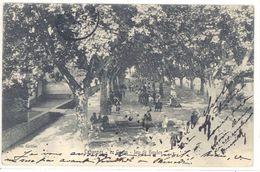 Cpa Cabannes - Le Cours - Jeu De Boules ( Pétanque )    (S.2390) - Otros Municipios