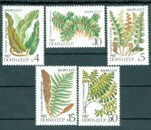 USSR Russia 1987 Plants Ferns Nature Fern Wild Plant Stamps MNH Michel 5729-5733 SG 5773-5777 Sc 5572-5576 - Plants