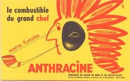 France Buvard Combustible Anthracine 21 Cm X 13,5 Cm - Blotters
