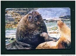 FALKLAND ISLANDS - Chip Phonecard As Scan - Falkland Islands