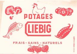 France Buvard   Potage Liebig ( Pliure, Taches ) 20 Cm X 14,5 Cm - Soups & Sauces