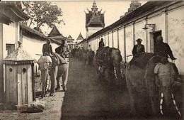 CAMBODGE - - INDOCHINE -  PHOM PENH - Eléphants Rentrant Aux écuries - Dégâts Provoqués Sur Les Fils Télégraphiques 1907 - Cambodge