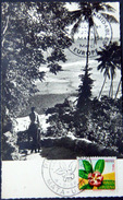 POLYNESIE DOM TOM  WALLIS ET FUTUNA  CARTE PREMIER JOUR VOIR LE DOS 2 SCAN - Wallis Y Futuna