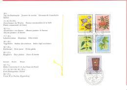 Schweiz / Helvetia  1975  Pro Juventute In Sonderheft # 142 - Usados