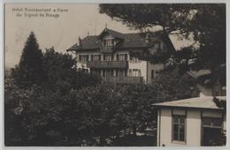 Hotel Restaurant & Parc Di Signal De Bougy - VD Vaud