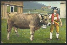APPENZELL Appenzeller Senn Tracht Kuh Herisau 1913 - AI Appenzell Rhodes-Intérieures