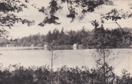New York Adirondack Mountains Star Lake Shore Syracuse Albertype