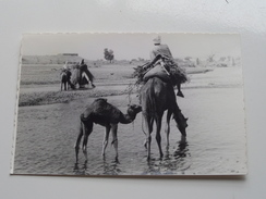 ETHIOPIA ( Photo Card ) Anno 19?? ( Zie Foto Details ) !! - Ethiopie