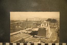 CP, ALGERIE, ORAN, Le Port, Les Silos Et La Baie Sainte Thérèse - Oran