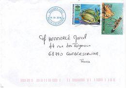 COL-L67 - NOUVELLE CALEDONIE Lot De 5 Lettres - Lettres & Documents