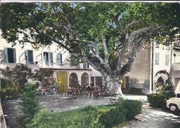 83---AUPS---le Grand Hôtel Du Cours Et Son Platane Géant--voir 2 Scans - Aups