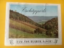 4951 -  Tschäpperli Famille Von Blarer Aesch Magnifique Phot Du Vignoble De Bâle Campagne Suisse - Autres