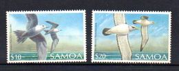OISEAUX - Samoa