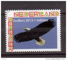 Nederland 2013 Persoonlijke Zegel Birds, Vogel, : Adelaar; Eagle - Ungebraucht