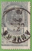 MiNr.50  O Belgien - 1893-1900 Schmaler Bart