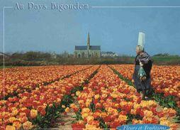 CPM Plomeur  St Jean De Trolimon Notre Dame De Tronoen Tulipes - Saint-Jean-Trolimon