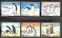 Umm Al-Qiwain 1972 Penguins - Umm Al-Qiwain