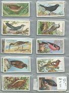 Ogdens Full Set  British Birds Pull Out Type 50/50 - Ogden's