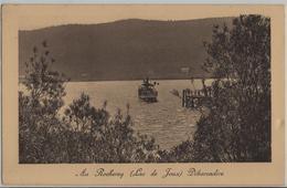 Au Rocheray (Lac De Joux) Debarcadere, Bateau, Dampfschiff - Photo Des Arts No. 3061 - VD Vaud