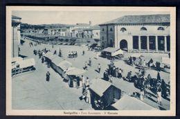 Senigallia Foro Annonario Il Mercato Viaggiata  COD.C.1966 - Senigallia