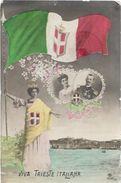 Italie VIVA TRIESTE ITALIANA  ....G - Trieste