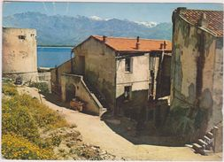 Haute Corse,calvi,capitale économique De La Balagne,ANCIENNE HABITATION - Calvi